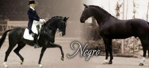 negro_slider-960x440